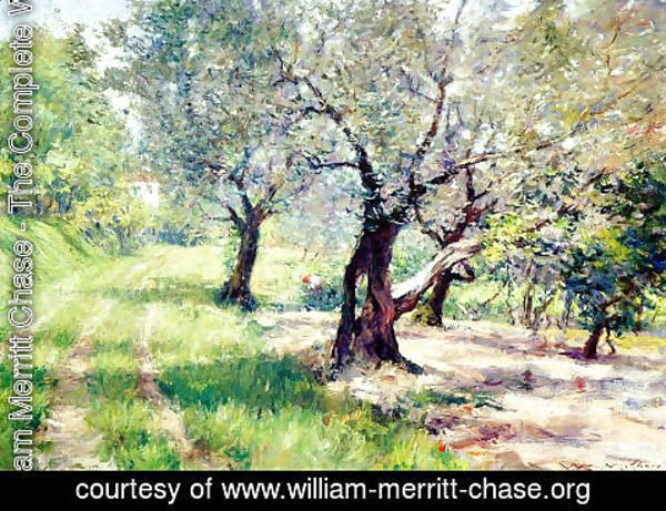 William Merritt Chase - The Olive Grove