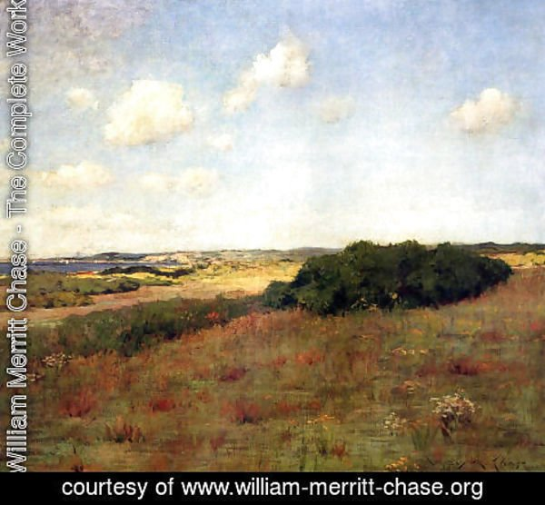 William Merritt Chase - Sunlight and Shadow, Shinnecock Hills, c.1895