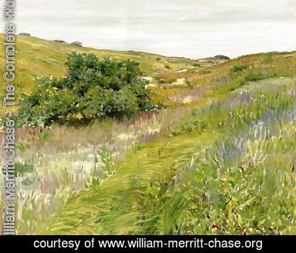 William Merritt Chase - Landscape  Shinnecock Hills